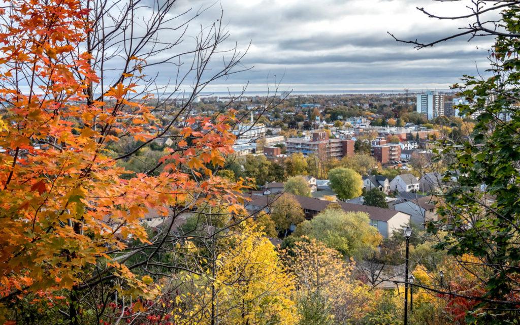 View of Hamilton in Autumn